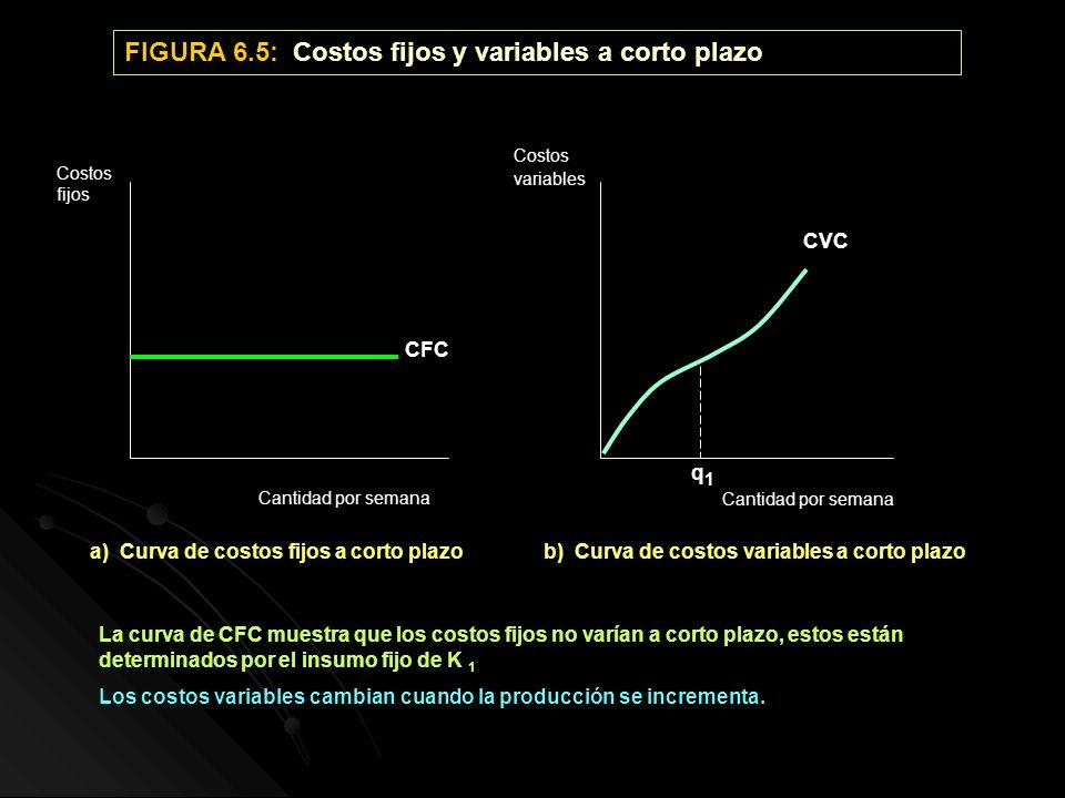 FIGURA 6.5: Costos fijos y variables a corto plazo a) Curva de costos fijos a corto plazob) Curva de costos variables a corto plazo Cantidad por seman