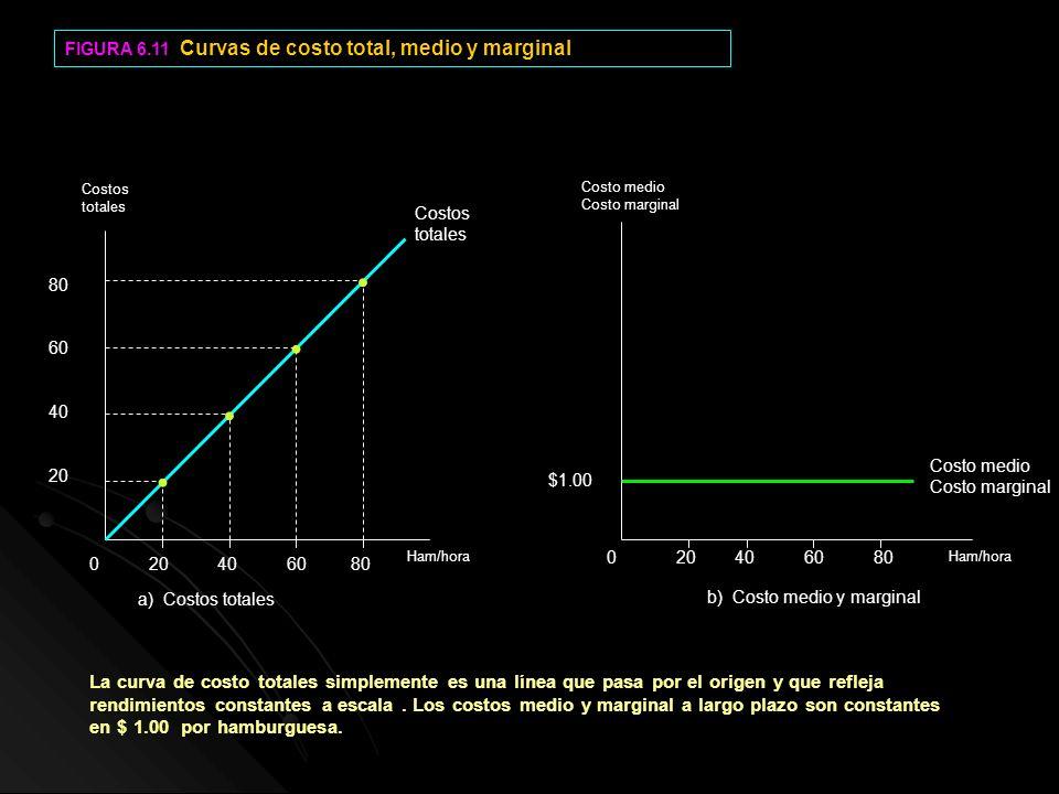 FIGURA 6.11 Curvas de costo total, medio y marginal 0 20 40 60 80 80 60 40 20 $1.00 Costo medio Costo marginal Costos totales Ham/hora Costos totales
