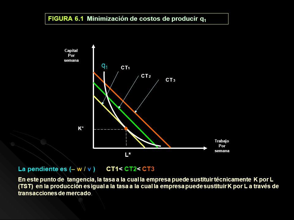 FIGURA 6.1 Minimización de costos de producir q 1 q1q1 La pendiente es (– w / v )CT1< CT2< CT3 En este punto de tangencia, la tasa a la cual la empres