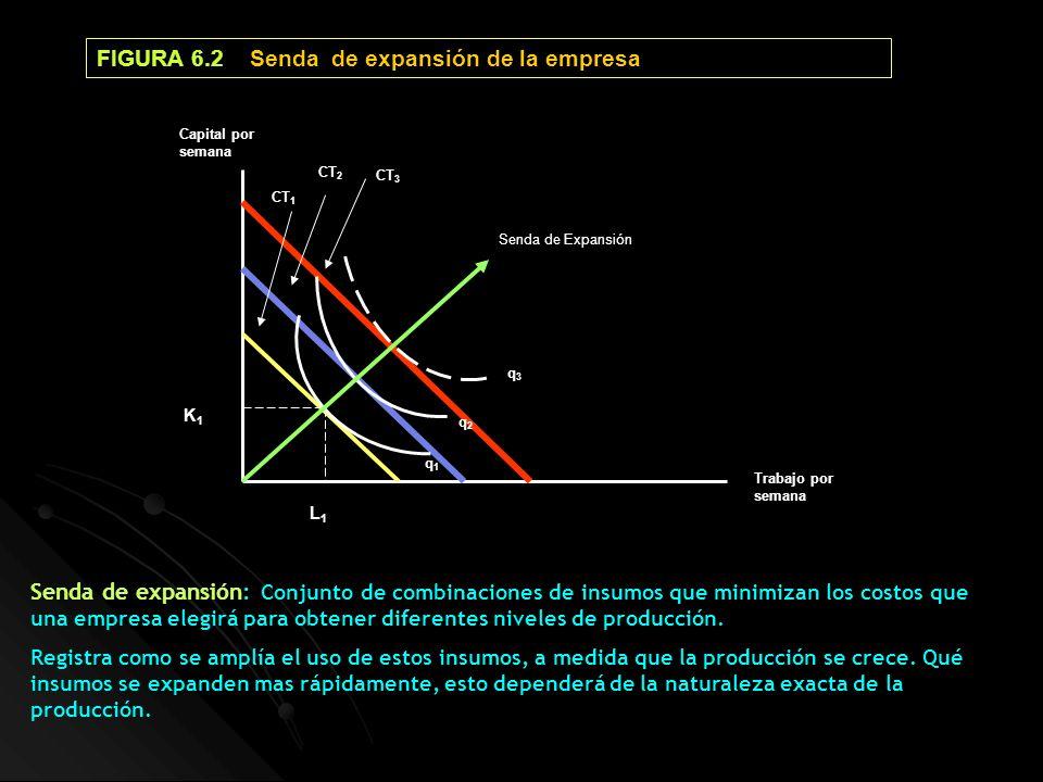 FIGURA 6.2 Senda de expansión de la empresa Senda de expansión: Conjunto de combinaciones de insumos que minimizan los costos que una empresa elegirá
