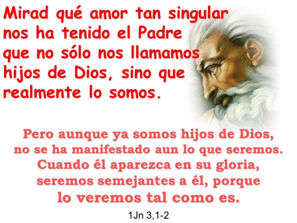 Queridos míos, amémonos unos a otros, porque el amor viene de Dios.