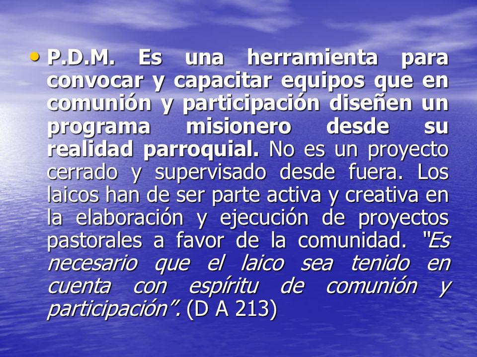P.D.M. Es una herramienta para convocar y capacitar equipos que en comunión y participación diseñen un programa misionero desde su realidad parroquial