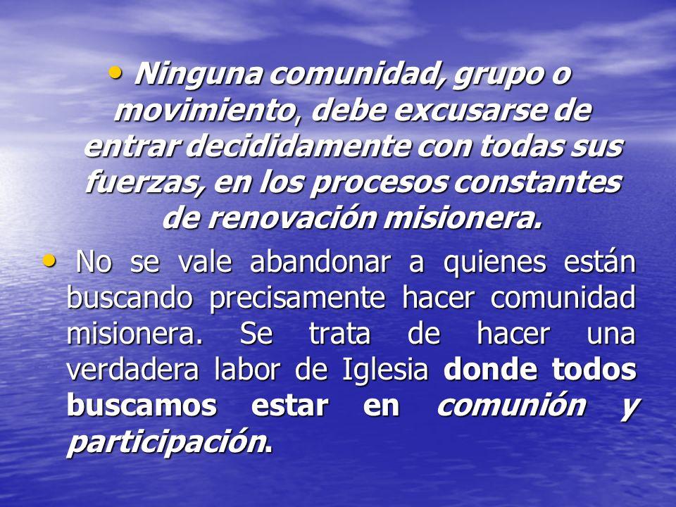 Ninguna comunidad, grupo o movimiento, debe excusarse de entrar decididamente con todas sus fuerzas, en los procesos constantes de renovación misioner