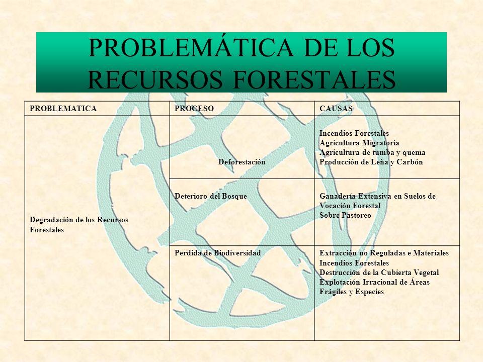 PROBLEMÁTICA DE LOS RECURSOS FORESTALES PROBLEMATICAPROCESOCAUSAS Degradación de los Recursos Forestales Deforestación Incendios Forestales Agricultura Migratoria Agricultura de tumba y quema Producción de Leña y Carbón Deterioro del BosqueGanadería Extensiva en Suelos de Vocación Forestal Sobre Pastoreo Perdida de BiodiversidadExtracción no Reguladas e Materiales Incendios Forestales Destrucción de la Cubierta Vegetal Explotación Irracional de Áreas Frágiles y Especies