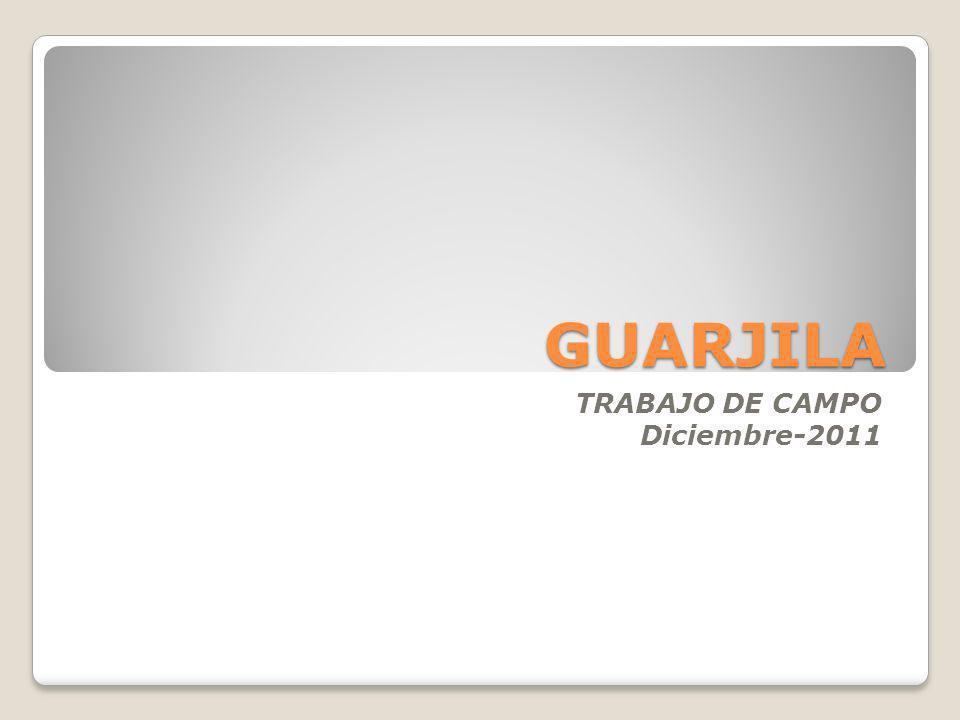 GUARJILA TRABAJO DE CAMPO Diciembre-2011