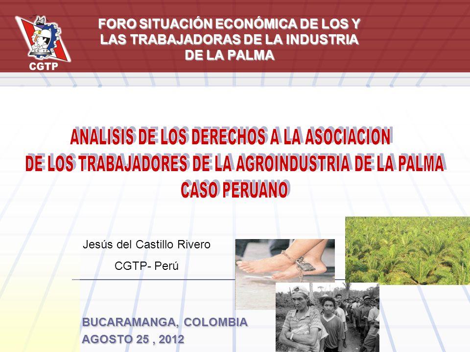 BUCARAMANGA, COLOMBIA AGOSTO 25, 2012 FORO SITUACIÓN ECONÓMICA DE LOS Y LAS TRABAJADORAS DE LA INDUSTRIA DE LA PALMA Jesús del Castillo Rivero CGTP- P