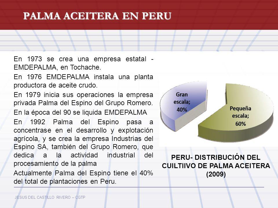 JESUS DEL CASTILLO RIVERO – CGTP PALMA ACEITERA EN PERU En 1973 se crea una empresa estatal - EMDEPALMA, en Tochache. En 1976 EMDEPALMA instala una pl