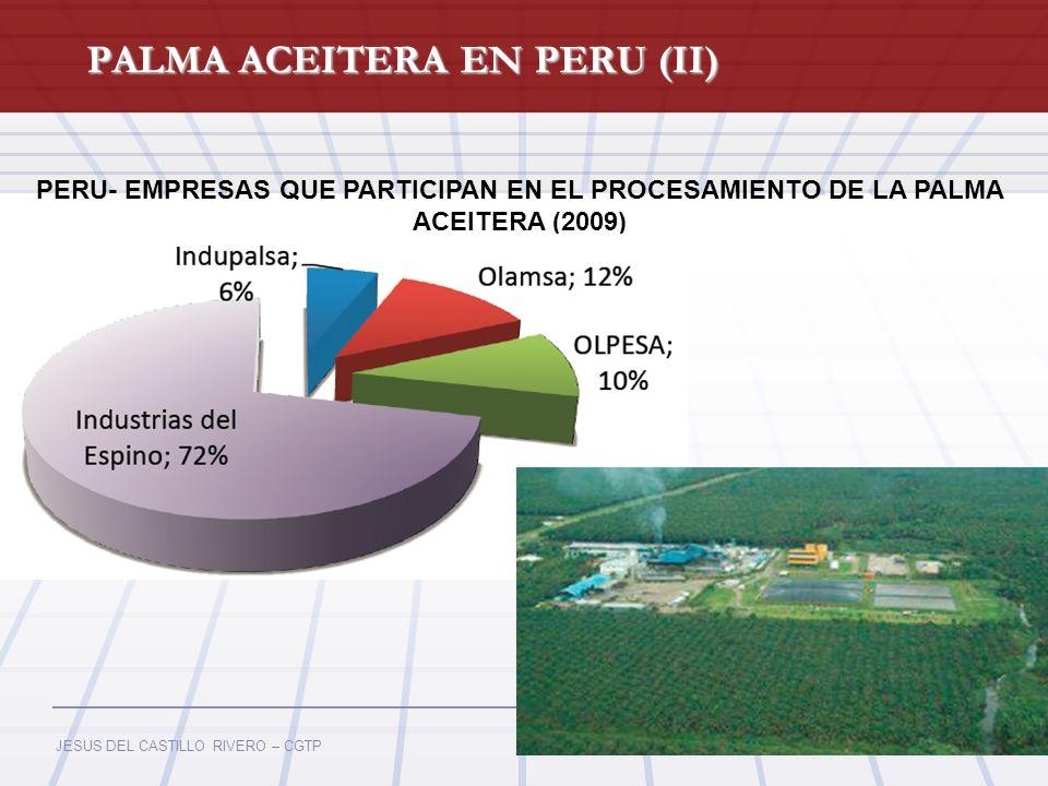 JESUS DEL CASTILLO RIVERO – CGTP PALMA ACEITERA EN PERU (II) PERU- EMPRESAS QUE PARTICIPAN EN EL PROCESAMIENTO DE LA PALMA ACEITERA (2009)