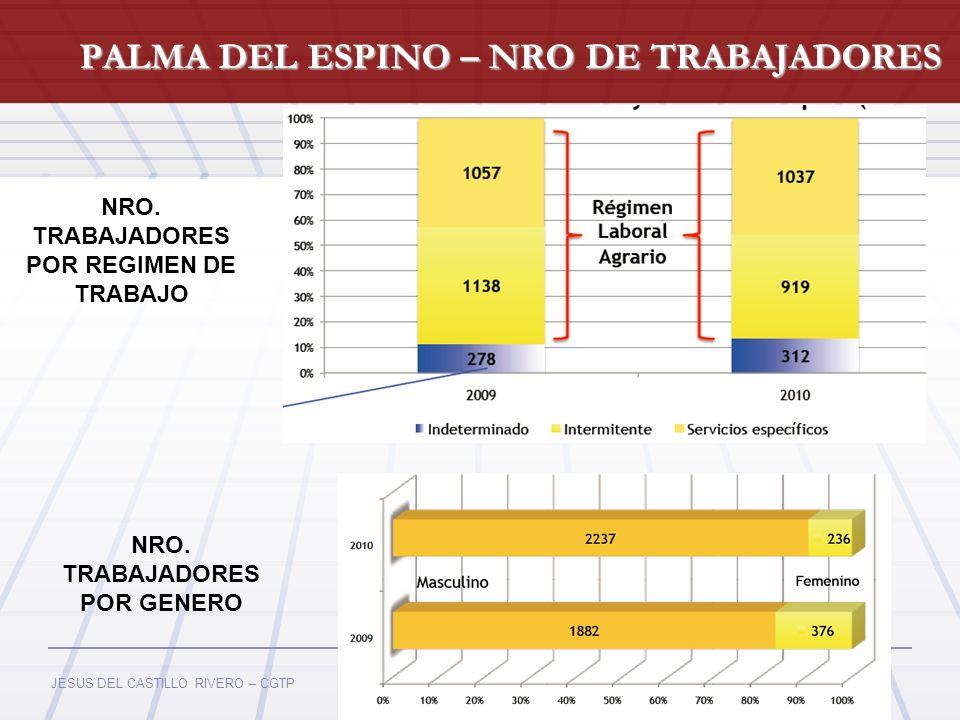 JESUS DEL CASTILLO RIVERO – CGTP PALMA DEL ESPINO – NRO DE TRABAJADORES Fuente: Ministerio de Energía y Minas (MEM) NRO. TRABAJADORES POR REGIMEN DE T