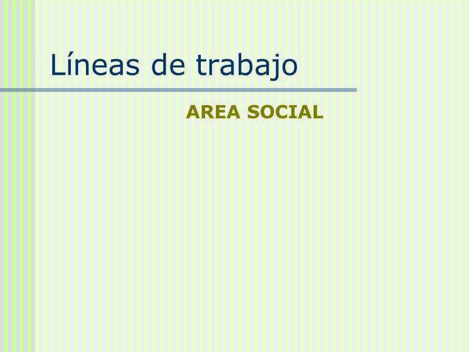 Líneas de trabajo AREA SOCIAL