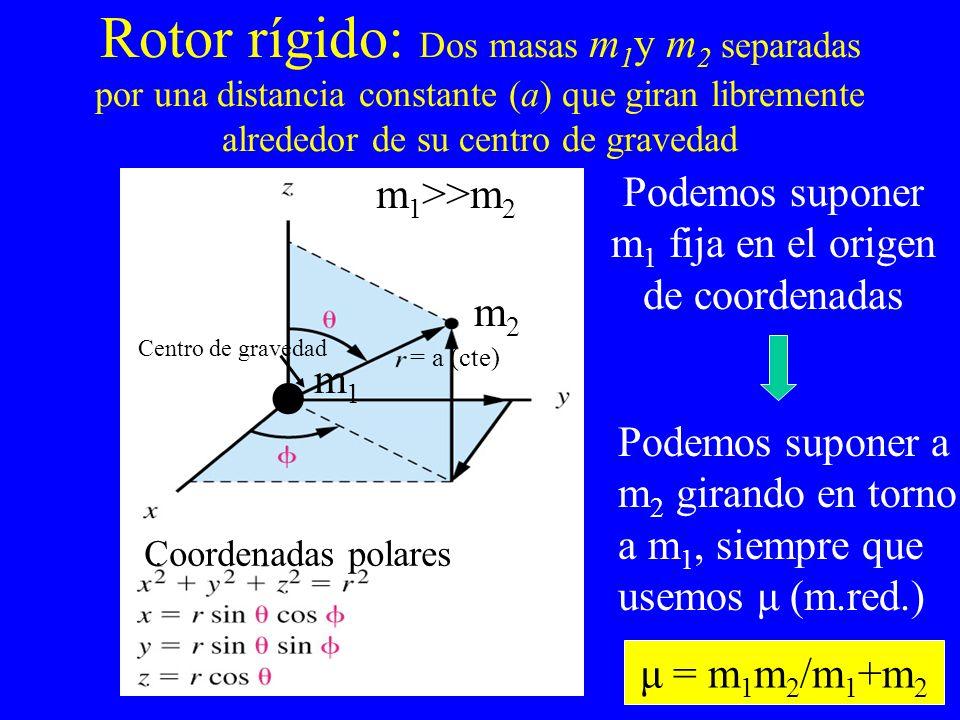 Rotor rígido: Dos masas m 1 y m 2 separadas por una distancia constante (a) que giran libremente alrededor de su centro de gravedad m2m2 m1m1 m 1 >>m