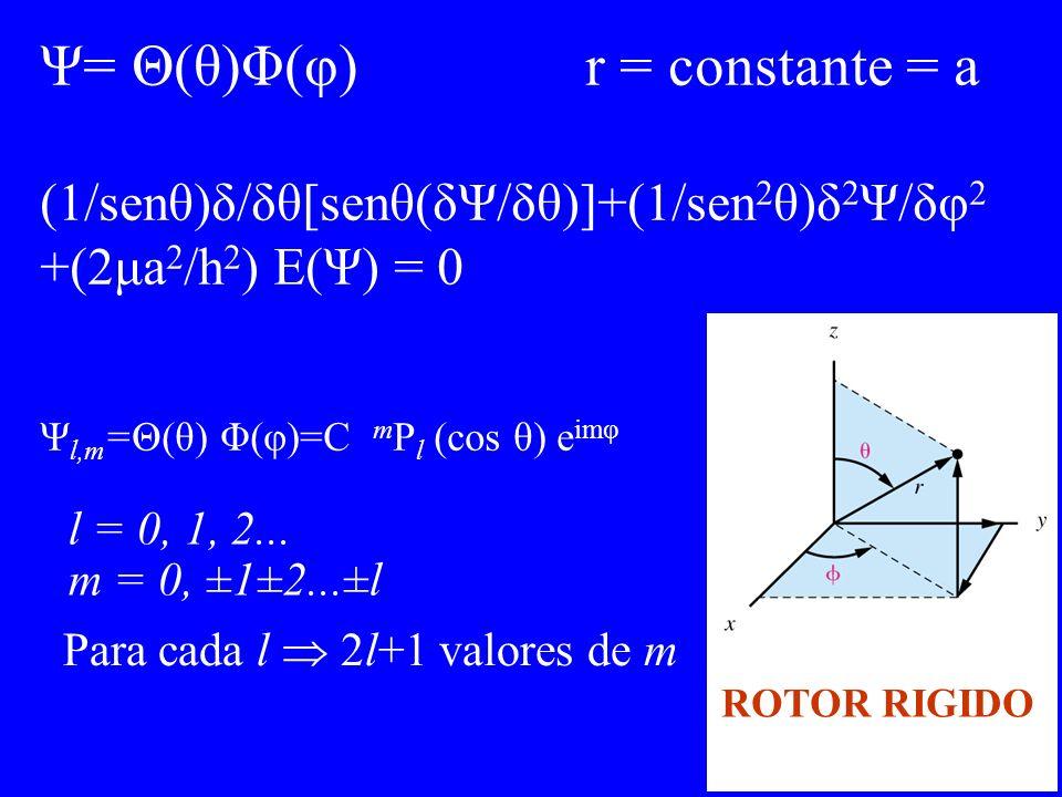 Ψ= Θ(θ)Φ(φ) r = constante = a (1/senθ)δ/δθ[senθ(δΨ/δθ)]+(1/sen 2 θ)δ 2 Ψ/δφ 2 +(2μa 2 /h 2 ) E(Ψ) = 0 Ψ l,m =Θ(θ) Φ(φ)=C m P l (cos θ) e imφ l = 0, 1,