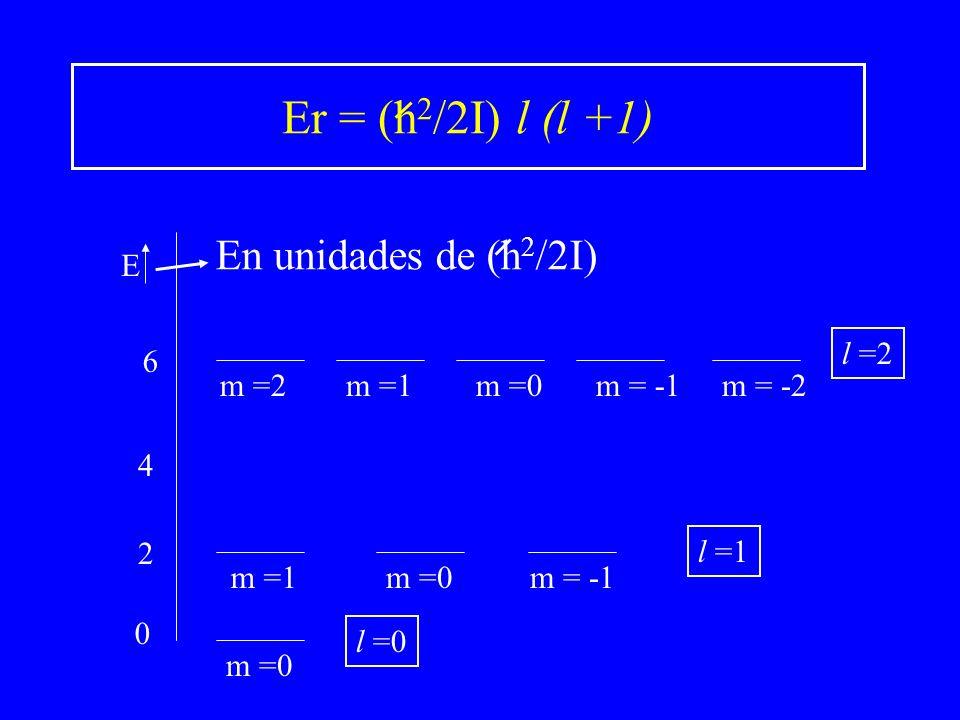 0 2 6 m =0 m =1m = -1 m =0m =1m = -1m =2m = -2 l =0 l =1 l =2 E 4 Er = (h 2 /2I) l (l +1) En unidades de (h 2 /2I)