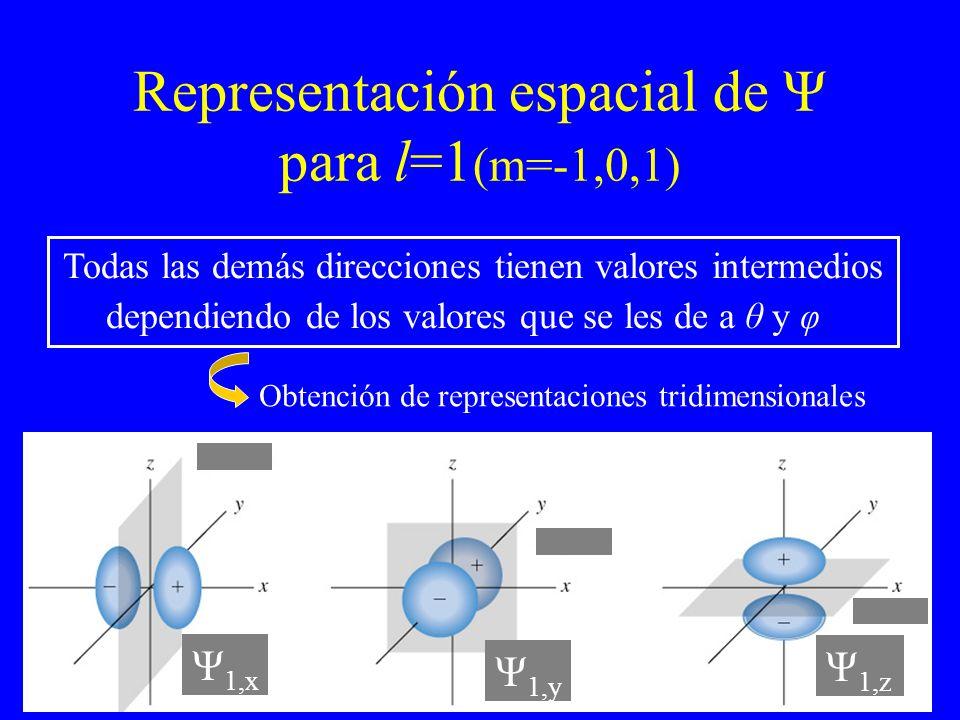 Representación espacial de Ψ para l=1 (m=-1,0,1) Todas las demás direcciones tienen valores intermedios dependiendo de los valores que se les de a θ y