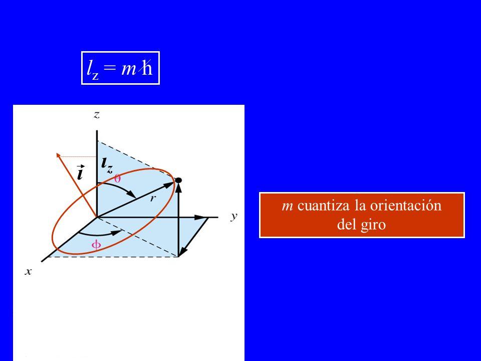 ι ιzιz l z = m h m cuantiza la orientación del giro