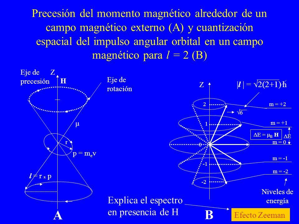 Precesión del momento magnético alrededor de un campo magnético externo (A) y cuantización espacial del impulso angular orbital en un campo magnético