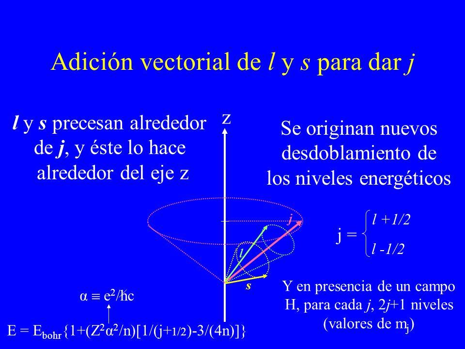 Adición vectorial de l y s para dar j s l j z l y s precesan alrededor de j, y éste lo hace alrededor del eje z Se originan nuevos desdoblamiento de l
