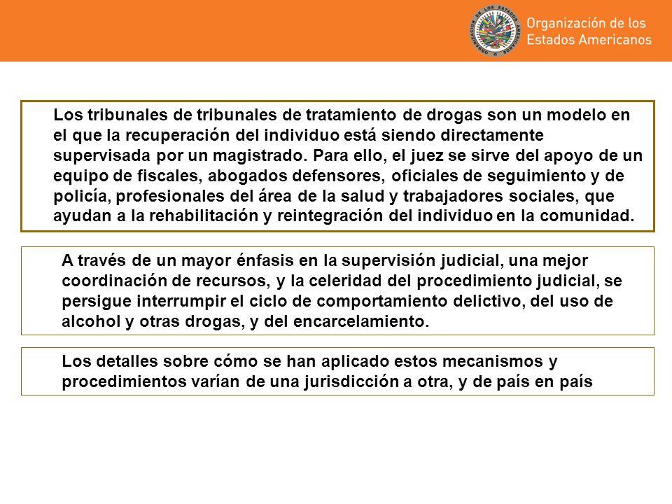 Los tribunales de tribunales de tratamiento de drogas son un modelo en el que la recuperación del individuo está siendo directamente supervisada por u