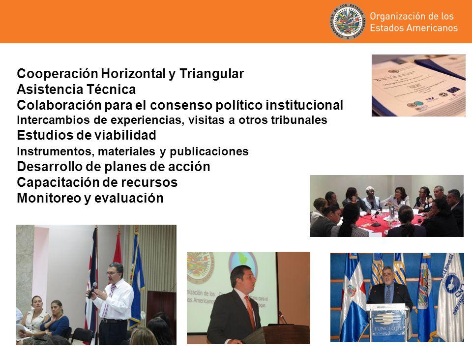 Cooperación Horizontal y Triangular Asistencia Técnica Colaboración para el consenso político institucional Intercambios de experiencias, visitas a ot