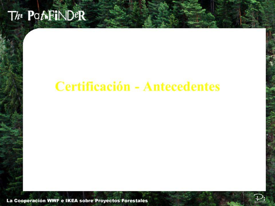 Certificación - Antecedentes