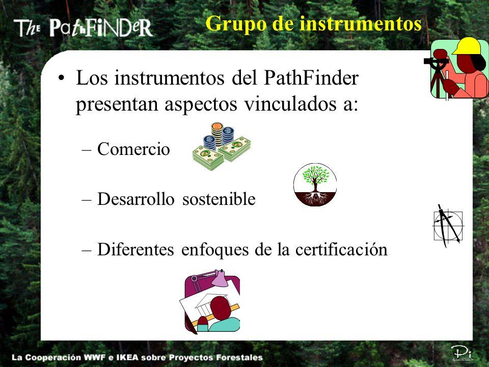 Grupo de instrumentos Los instrumentos del PathFinder presentan aspectos vinculados a: –Comercio –Desarrollo sostenible –Diferentes enfoques de la cer
