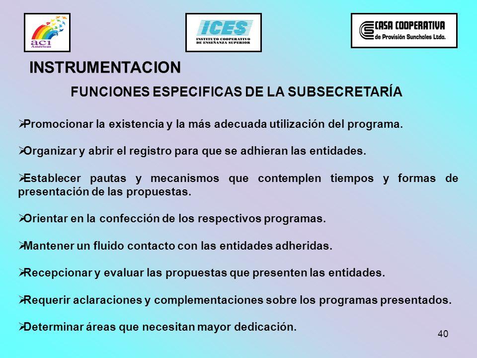 40 FUNCIONES ESPECIFICAS DE LA SUBSECRETARÍA Promocionar la existencia y la más adecuada utilización del programa. Organizar y abrir el registro para