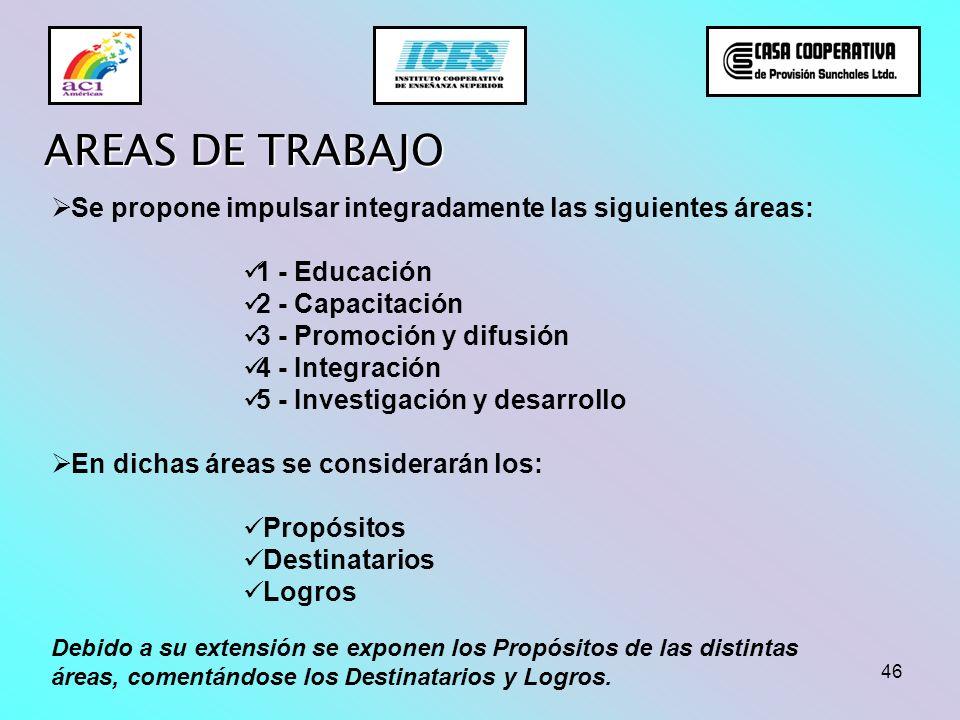 46 AREAS DE TRABAJO Se propone impulsar integradamente las siguientes áreas: 1 - Educación 2 - Capacitación 3 - Promoción y difusión 4 - Integración 5