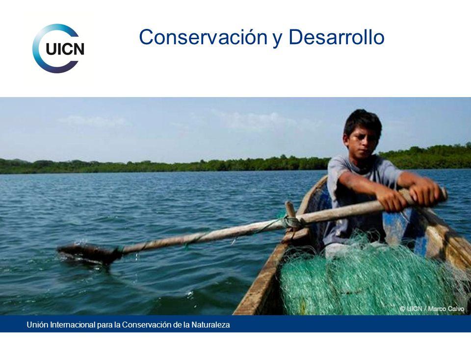 Unión Internacional para la Conservación de la Naturaleza Fortalezas de UICN Poder de convocatoria y Cabildeo: red de miembros, ong´s, gobiernos, empresa privada, instituciones de investigación y académicas.
