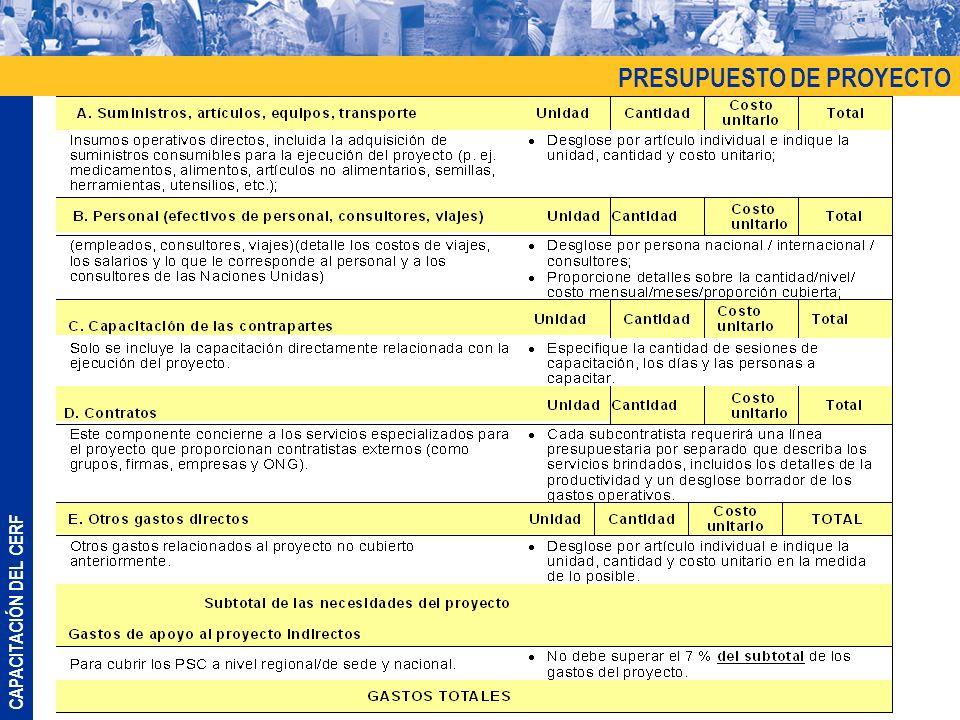 CAPACITACIÓN DEL CERF PRESUPUESTO DE PROYECTO