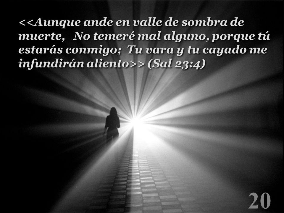 20 > (Sal 23:4)
