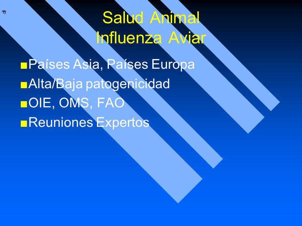 * * 0 Salud Animal Influenza Aviar Países Asia, Países Europa Alta/Baja patogenicidad OIE, OMS, FAO Reuniones Expertos