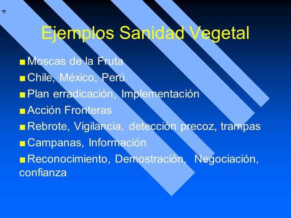 * * 0 Ejemplos Sanidad Vegetal Moscas de la Fruta Chile, México, Perú Plan erradicación, Implementación Acción Fronteras Rebrote, Vigilancia, detecció