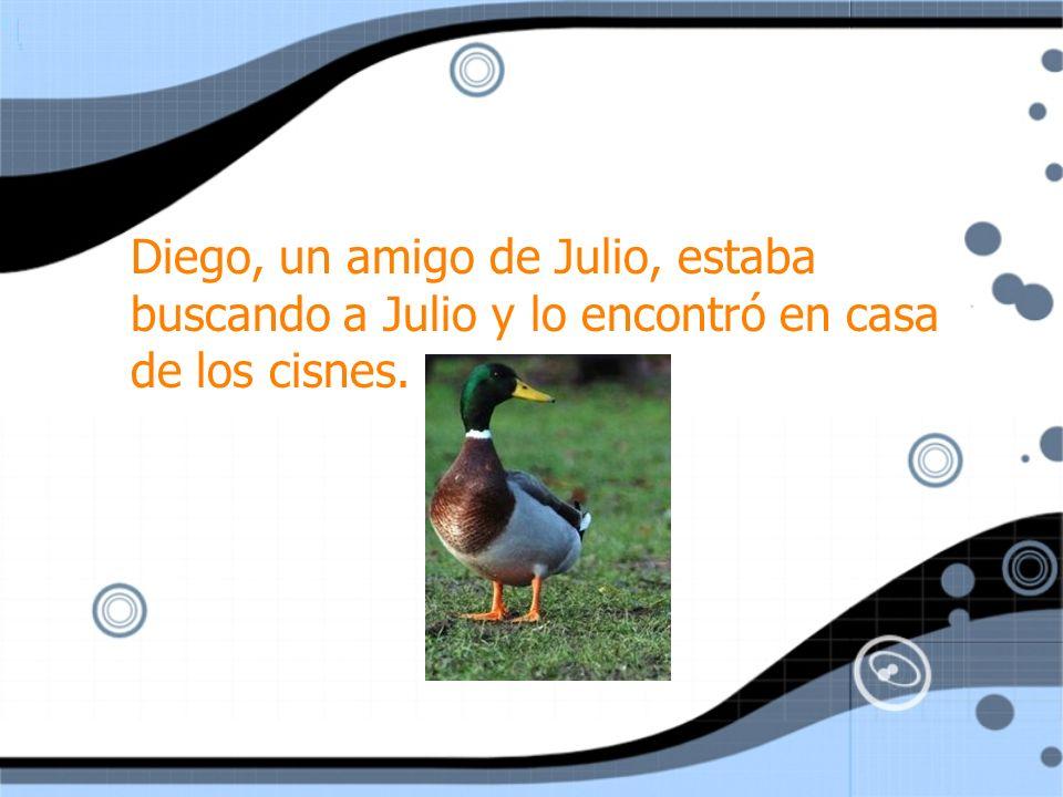 Julio estaba nadando y divirtiéndose con los cisnes. Diego dijo, ¡Que horror! ¡Esto es terrible!