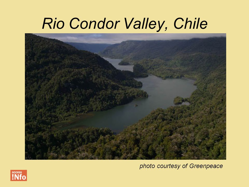 Rio Condor Valley, Chile photo courtesy of Greenpeace