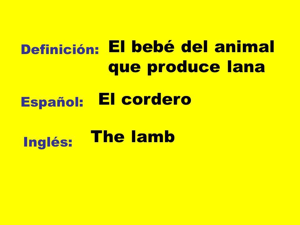 Definición: Español: Inglés: El bebé del animal que produce lana El cordero The lamb