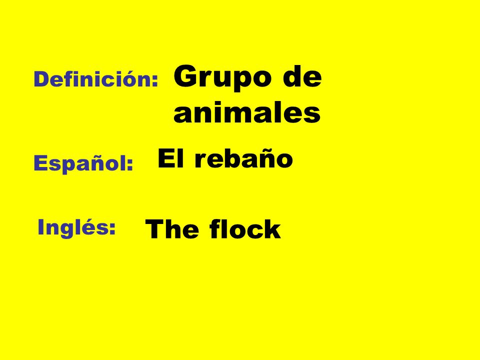 Definición: Español: Inglés: Grupo de animales El rebaño The flock