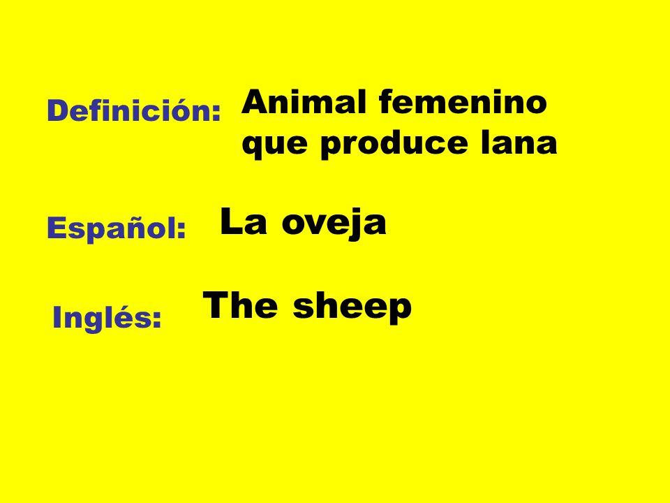 Definición: Español: Inglés: Animal femenino que produce lana La oveja The sheep