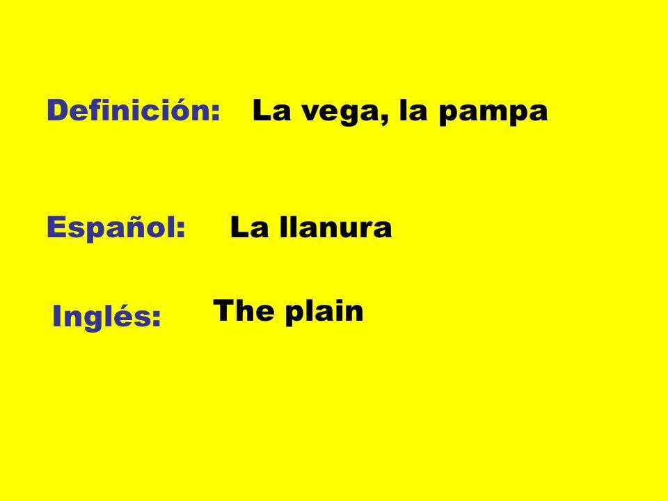 Definición: Español: Inglés: La vega, la pampa La llanura The plain