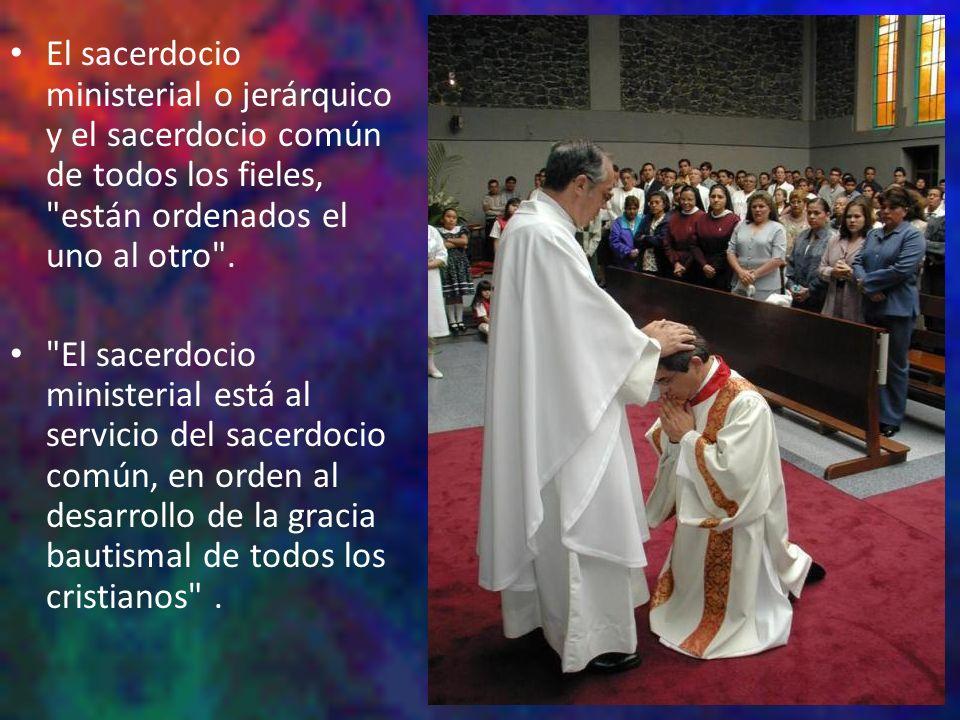 El sacerdocio ministerial o jerárquico y el sacerdocio común de todos los fieles,
