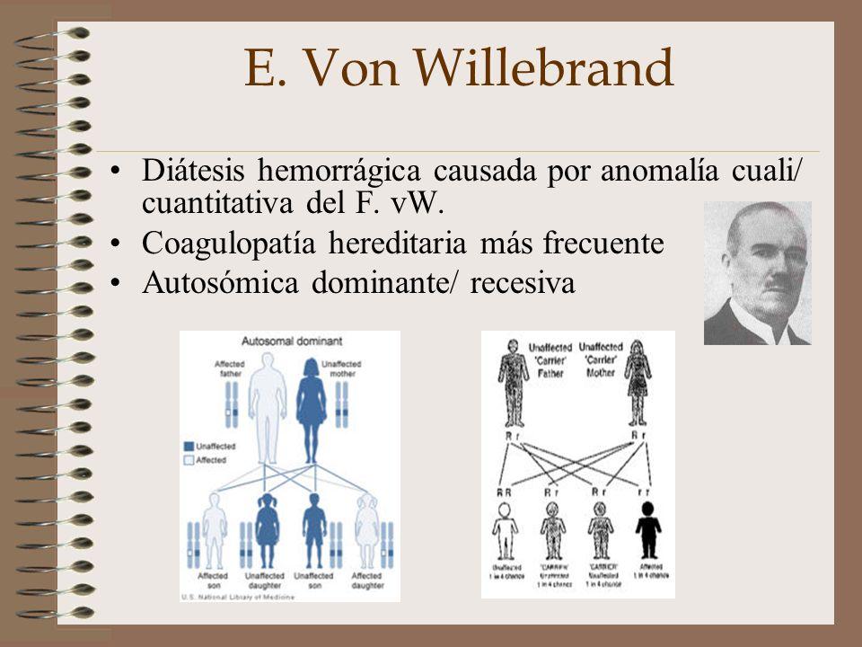 E. Von Willebrand Diátesis hemorrágica causada por anomalía cuali/ cuantitativa del F. vW. Coagulopatía hereditaria más frecuente Autosómica dominante