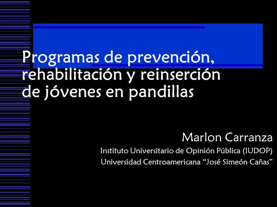 Programas de prevención, rehabilitación y reinserción de jóvenes en pandillas Marlon Carranza Instituto Universitario de Opinión Pública (IUDOP) Unive