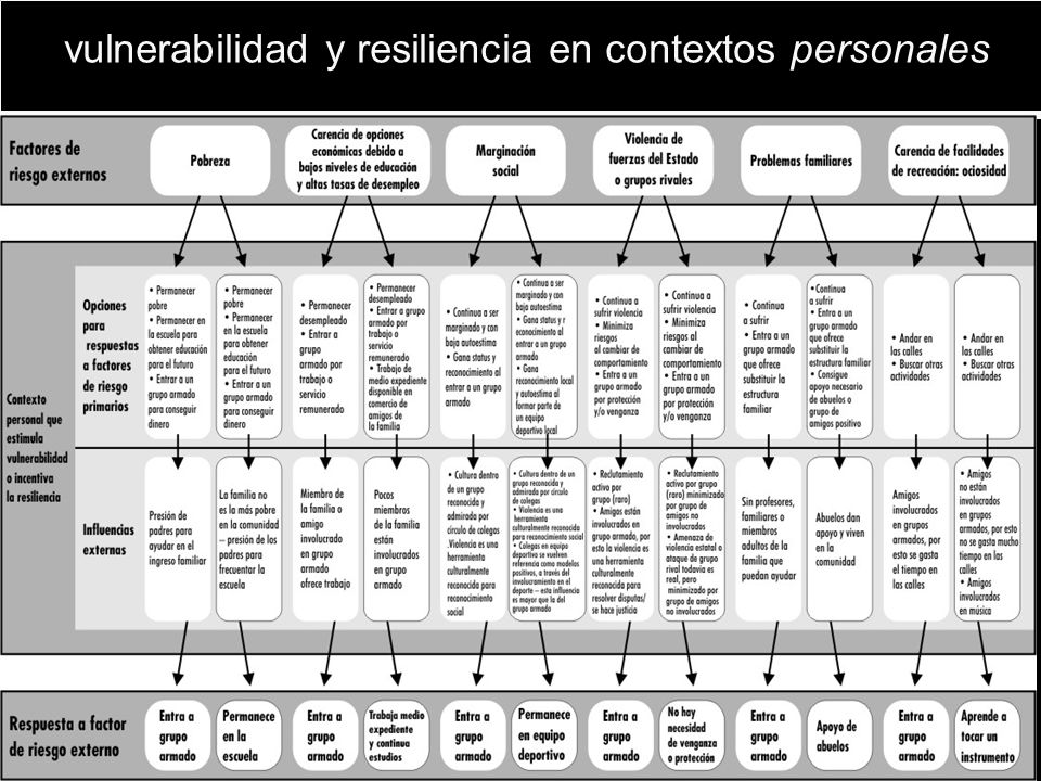 Vulnerable and resilient personal contexts vulnerabilidad y resiliencia en contextos personales