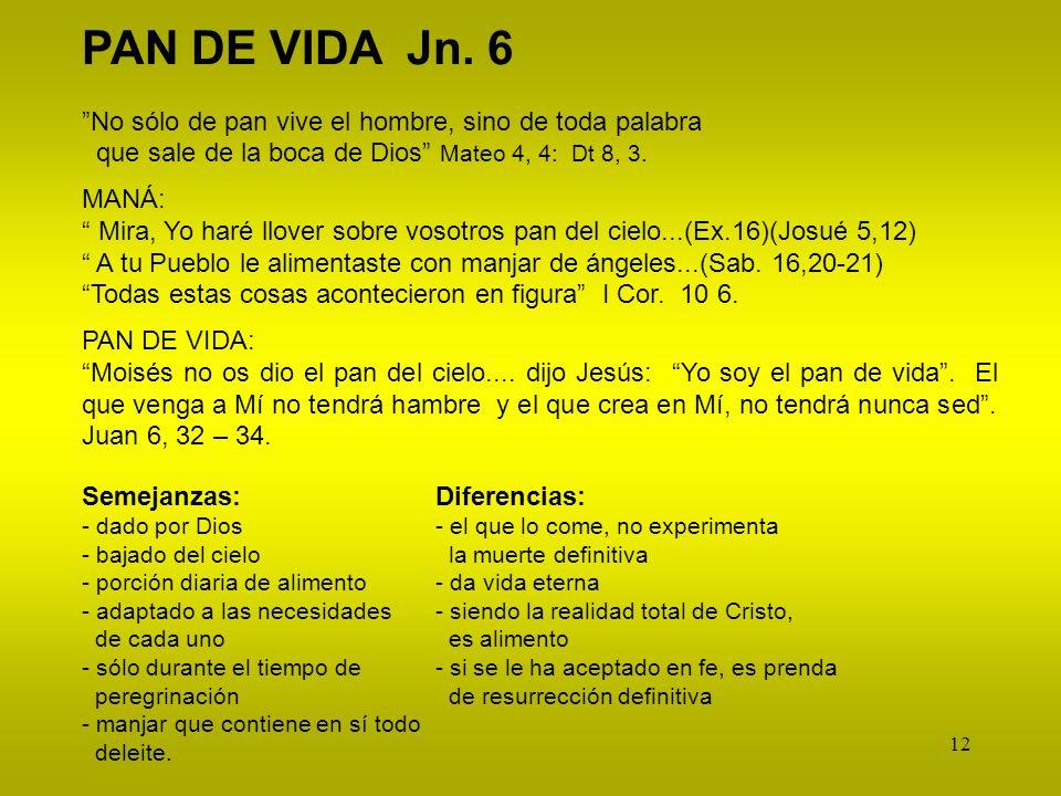 12 PAN DE VIDA Jn. 6 No sólo de pan vive el hombre, sino de toda palabra que sale de la boca de Dios Mateo 4, 4: Dt 8, 3. MANÁ: Mira, Yo haré llover s
