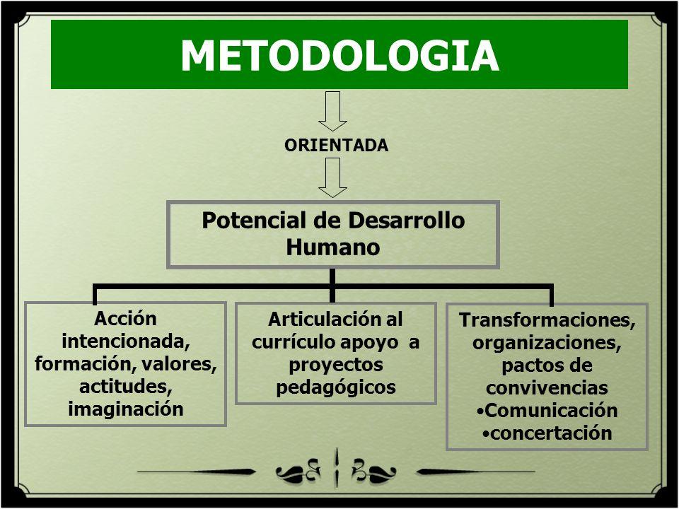 METODOLOGIA ORIENTADA Potencial de Desarrollo Humano Acción intencionada, formación, valores, actitudes, imaginación Articulación al currículo apoyo a