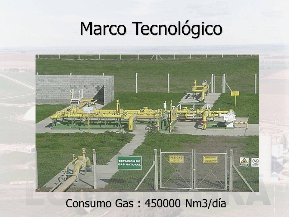 Consumo Gas : 450000 Nm3/día