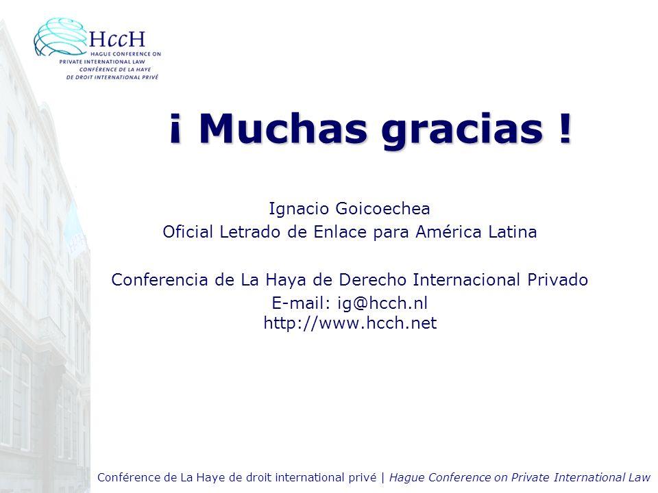 ¡ Muchas gracias ! Ignacio Goicoechea Oficial Letrado de Enlace para América Latina Conferencia de La Haya de Derecho Internacional Privado E-mail: ig