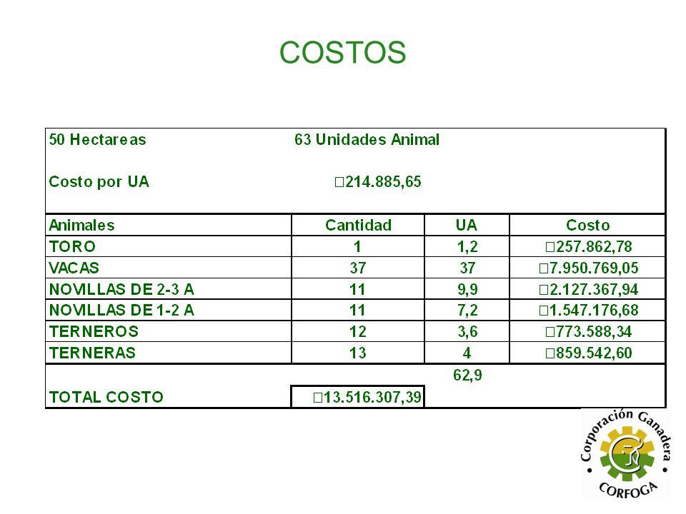 50 Hectareas63 Unidades Animal Costo por UA217.447,33 AnimalesCantidadUACosto TORO11,2260.936,80 VACAS36 7.828.103,88 NOVILLAS DE 2-3 A119,92.152.728,