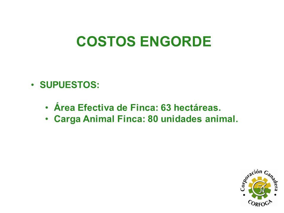 COSTOS ENGORDE SUPUESTOS: Área Efectiva de Finca: 63 hectáreas. Carga Animal Finca: 80 unidades animal.