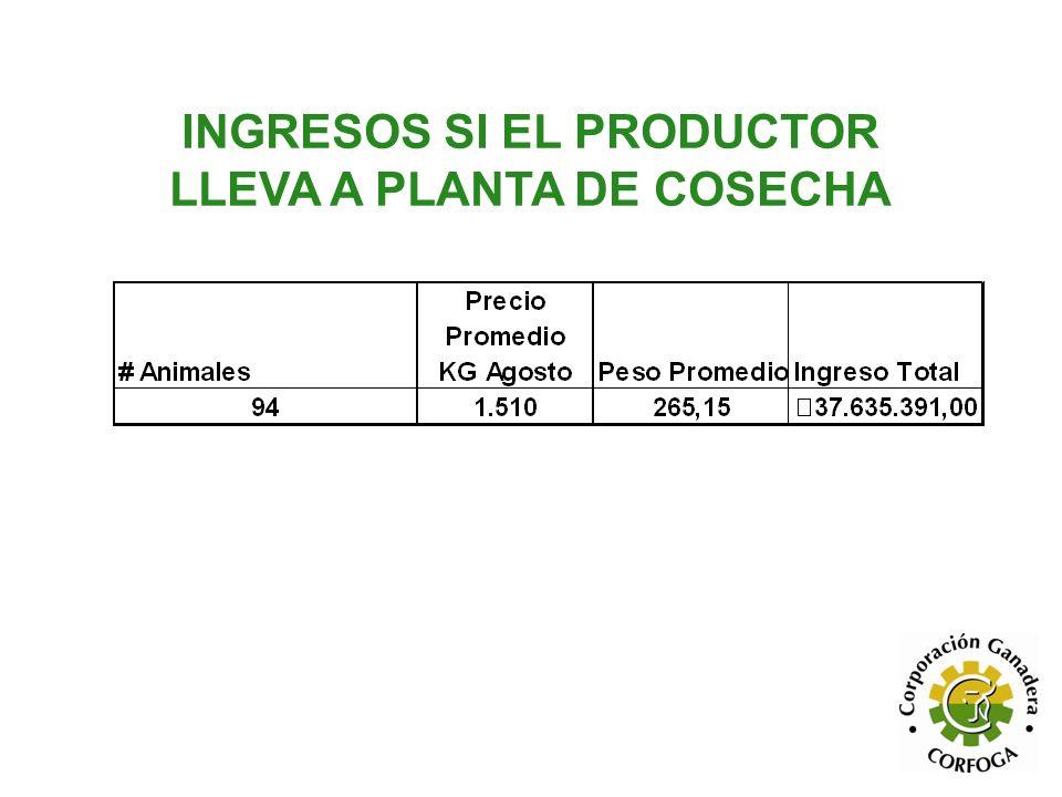 INGRESOS SI EL PRODUCTOR LLEVA A PLANTA DE COSECHA