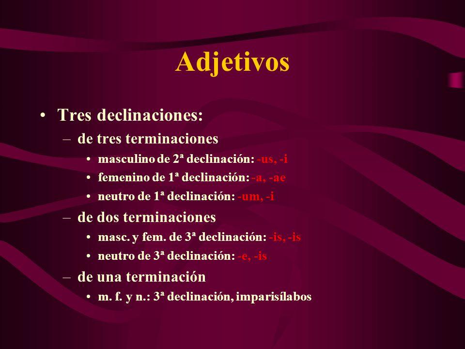 Adjetivos Tres declinaciones: –de tres terminaciones masculino de 2ª declinación: -us, -i femenino de 1ª declinación: -a, -ae neutro de 1ª declinación